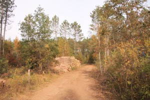 Logs harvested on investor-owned forestland in northern Wisconsin