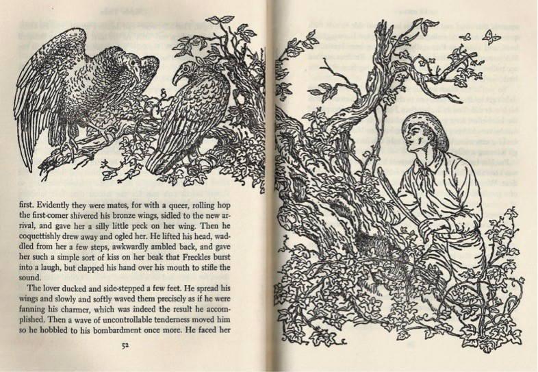 Gene Stratton-Porter's 1904 novel