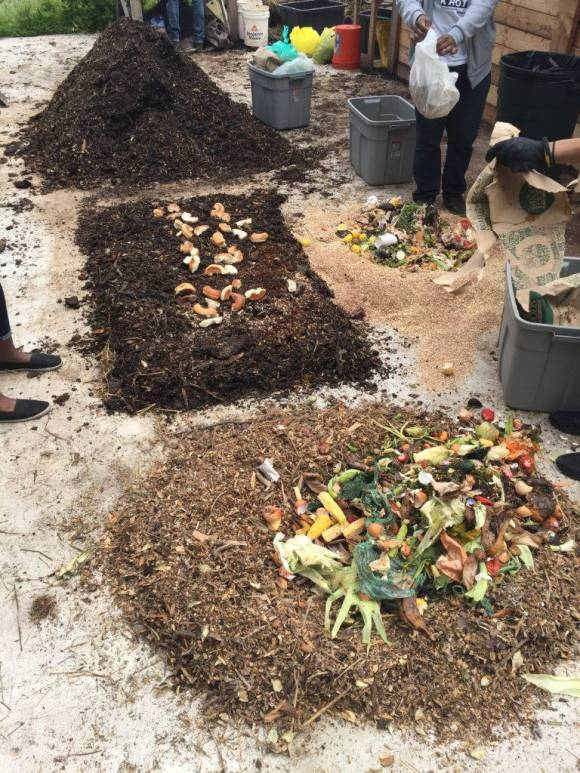 Figure 3: Food scraps being mixed with wood chips at Know Waste Lands. Photo by author.