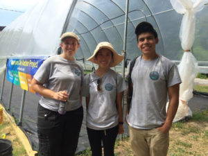Undergraduate students Bridget Shobe, Kha-Ai Tran, and Jose Marquina join Dr. Biehler on her research team. Photo by Shannon LaDeau, 2016.
