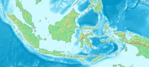 Global Environmental Change in Indonesia: A Roundtable