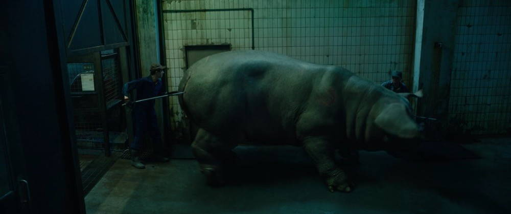 Okja, a large porcine animal, is herded down a dark, dirty hallway by two men dressed in coveralls and holding shock prods