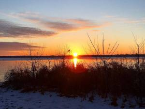 The sun sets at the lakeshore and the silhouette of a bird is at the edge of the setting sun.