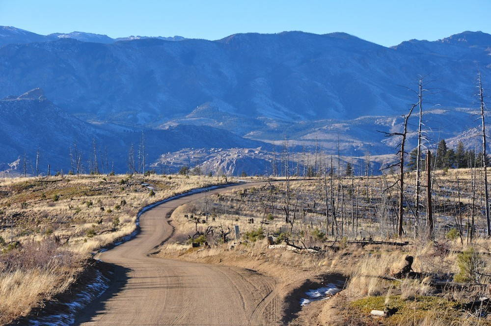 A rural dirt road winds through part of the Hayman Fire burn area where a dense forest of pine trees once stood.