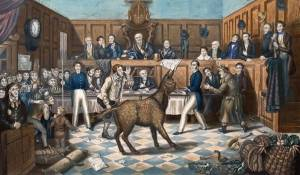 A color illustration of a donkey causing a commotion in an ornate English courtroom full of people in fine clothes.