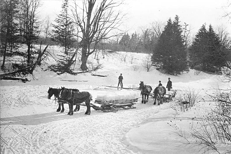 A two-horse drawn wagon piled with squares of ice from the frozen river.
