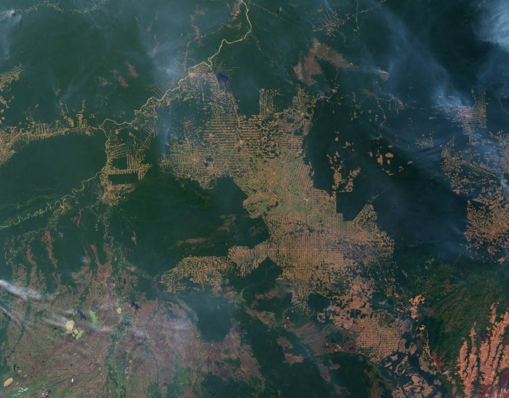 Satellite image showing large swaths of deforestation in the Amazon
