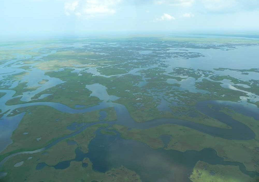 Louisiana wetlands photographed from above