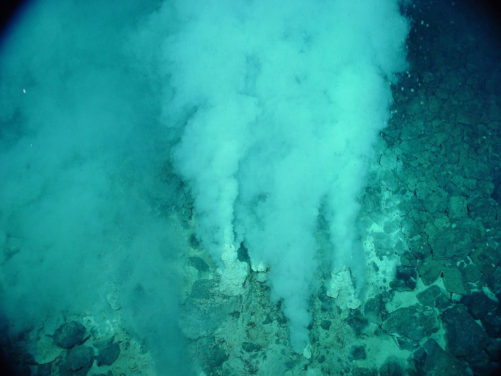 A white plume of water and minerals surfacing from a hydrothermal vent.