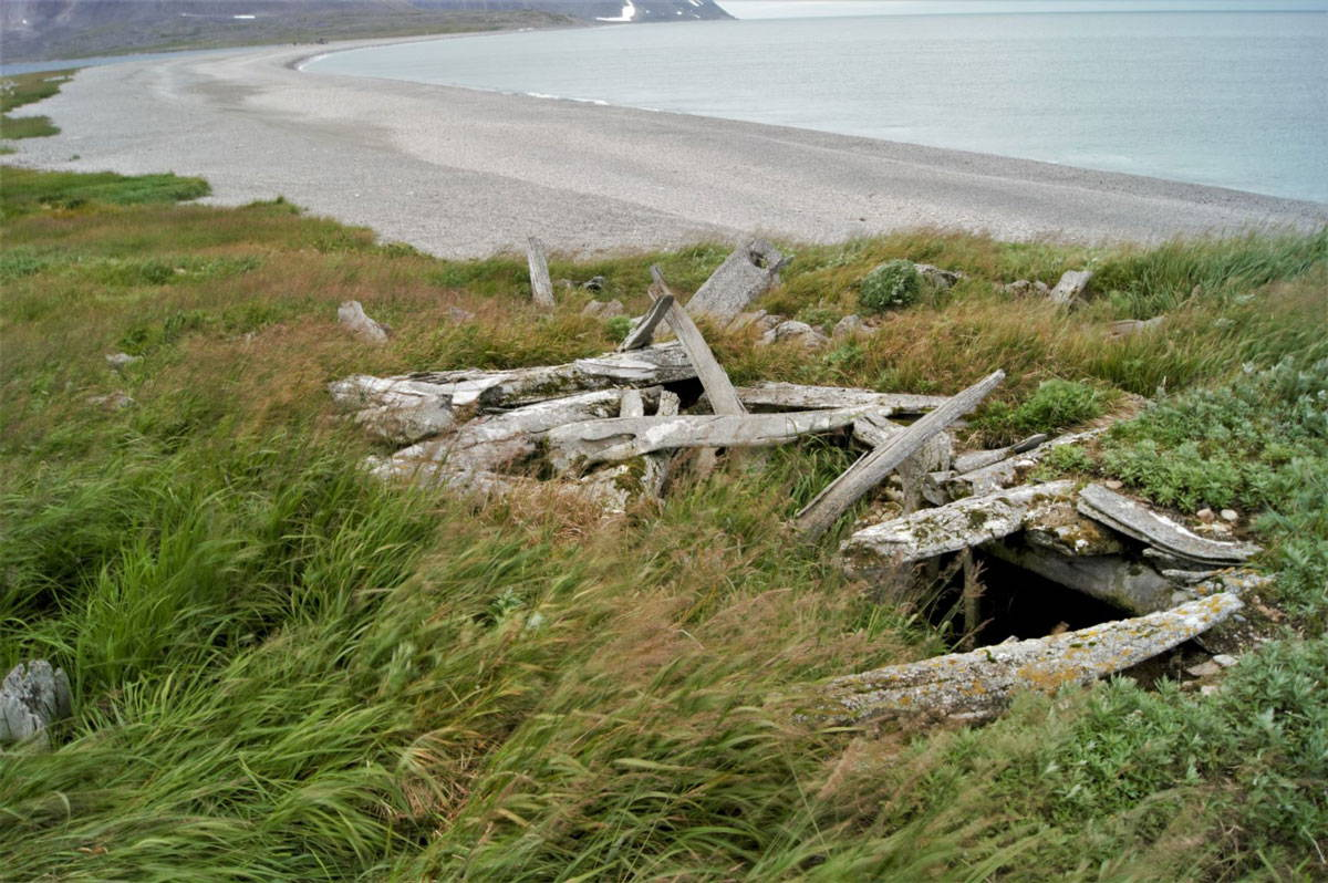 A photograph of whalebone rafters on an abandoned underground house, with a shoreline visible in the background
