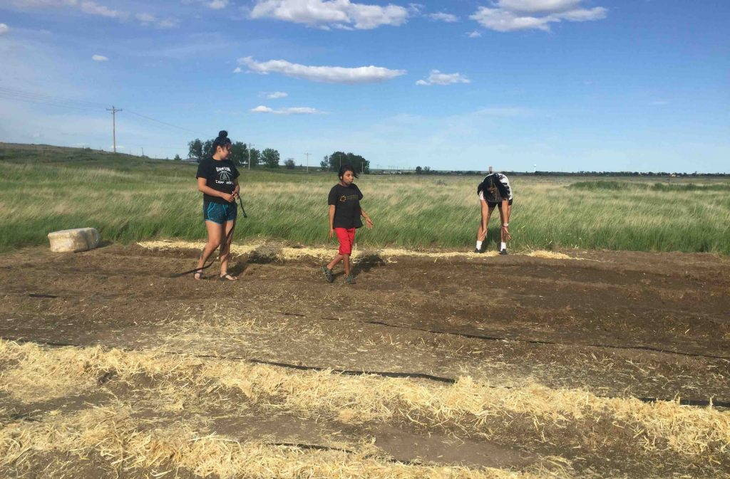 Three teenagers stand in a prepared garden bed surrounded by grassland, part of a cooperative farm project to restore Indigenous foodways.