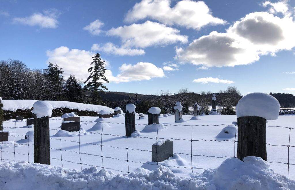 A rural cemetery covered in deep snow
