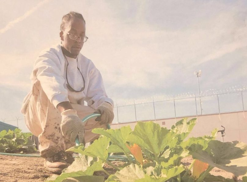 Lawrence Jenkins outside and farming with a squash plant.