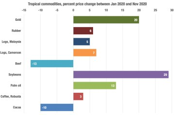 A graph showing 2020 price changes of tropical commodities
