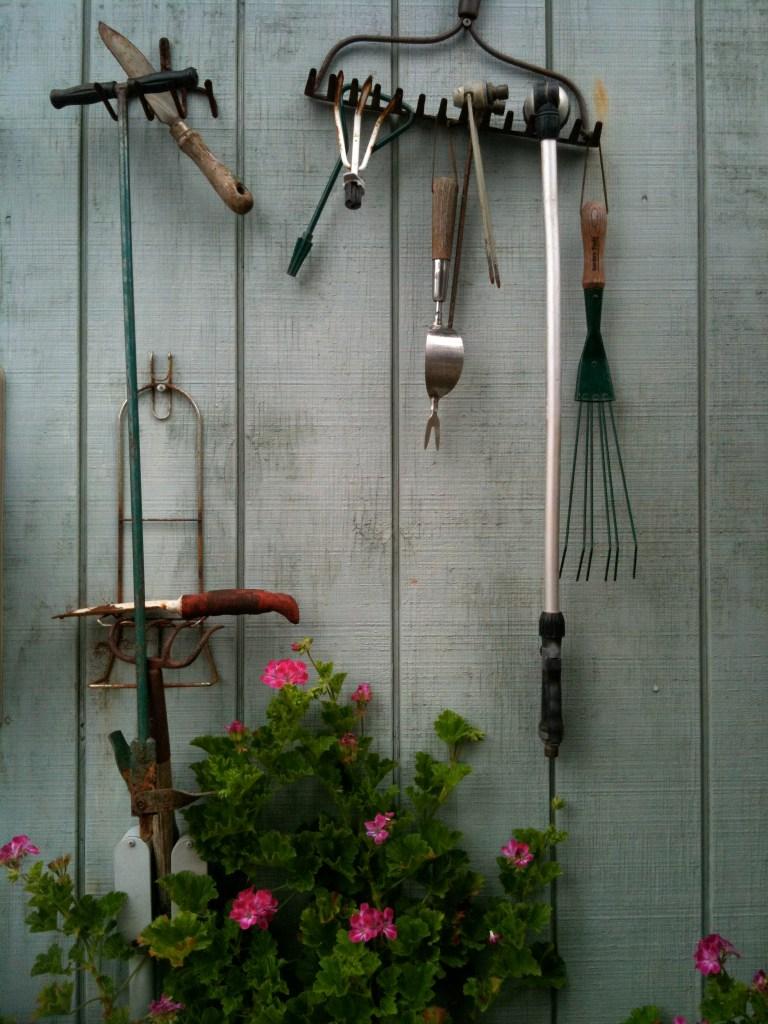 My Garage wall tool storage & Scented Geranium