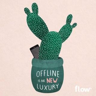 cactus_watermerk_klein