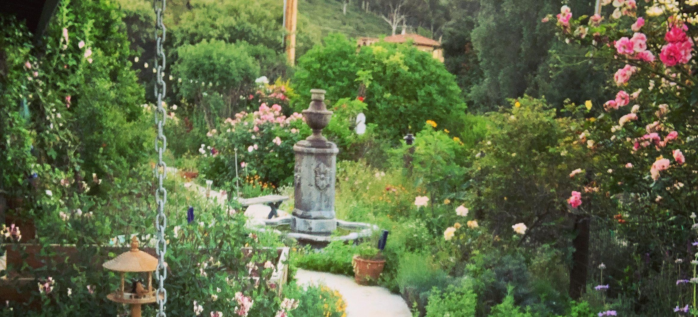 Karen England's EdgehillHerbFarm Blog