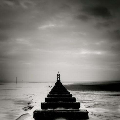 The Line Crosby Beach Merseyside