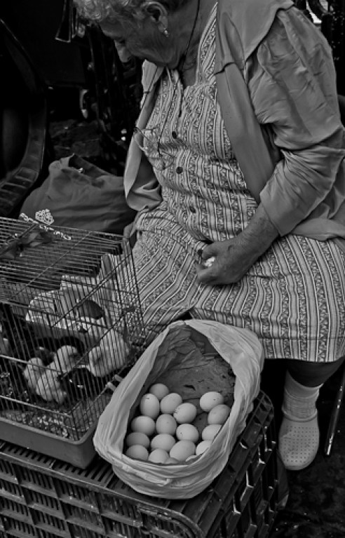 """Elderly woman selling Sicilian white eggs"" Catania, Italy"