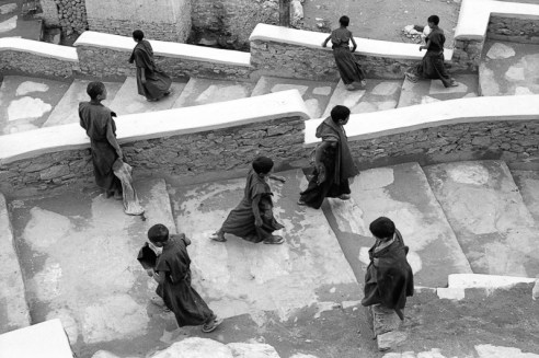 Monks Shey Ladakh, India