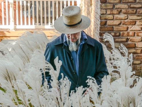 Amish Man Pauses in a Garden