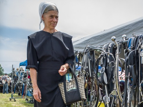 Amish Woman in Traditional Coverings