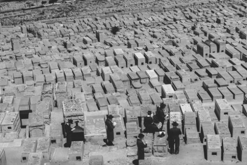 Mount of Olives Cemetery June 15, 2015 - Orthodox Jewish men pray at the largest and oldest cemetery of Mount Olives in Jerusalem.