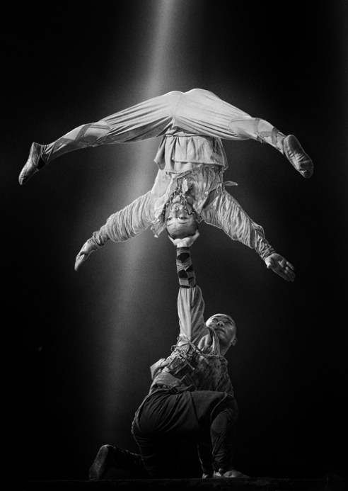 Phenix Circus Paris December 2015-11