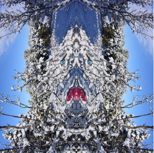 Sprit in the Winter Woods