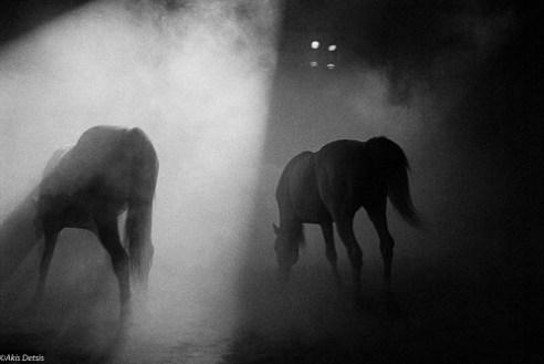 AkisDetsis_Circus09