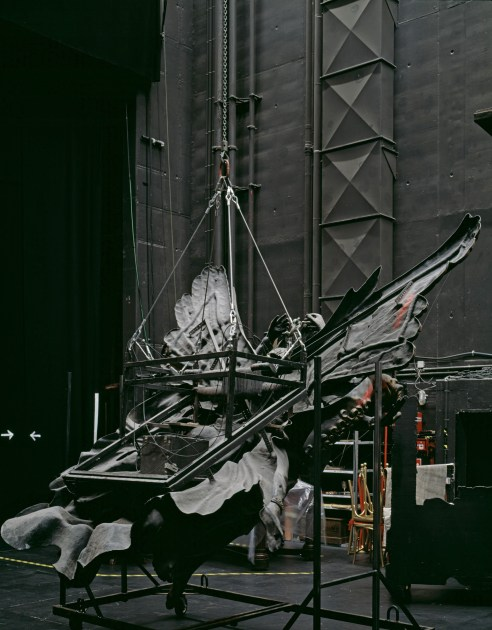 "Neue Flora, Hamburg, 2015 Phantom of the Opera Sidestage ""Fallen Angel"""