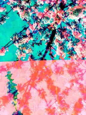 Spring Blossom Scarf