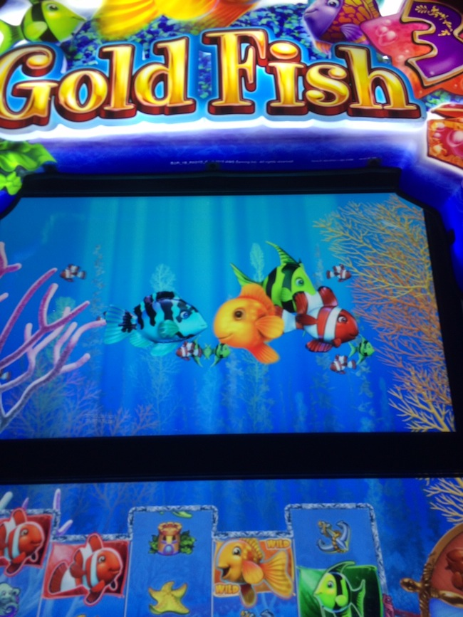 Gold Fish 3 Slot Machine At Red Rock Resort Las Vegas