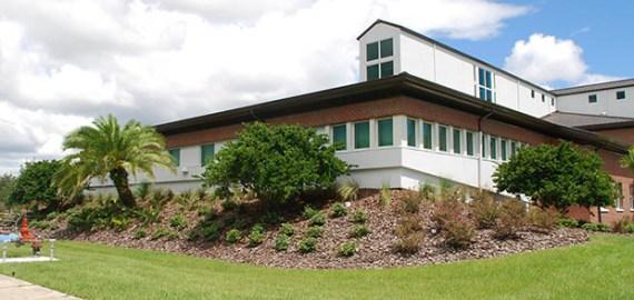 Warner College Landscape