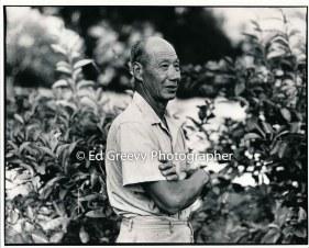 ah-hjing-chow-kauai-taro-farmer-2666-73-19a-8-73