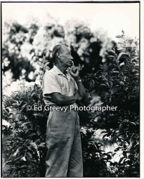 taro-farmer-ah-hing-chow-on-his-niumalu-nawiliwili-kauai-farm-2666-73-21a-8-73