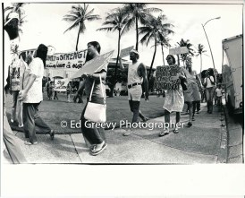 city-hall-demo-by-waiahole-waikane-residents-and-their-supporters-2932-6-11-12-4-75