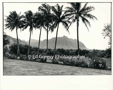 view-from-waiahole-waikane-school-2654-3-15a-4-28-73
