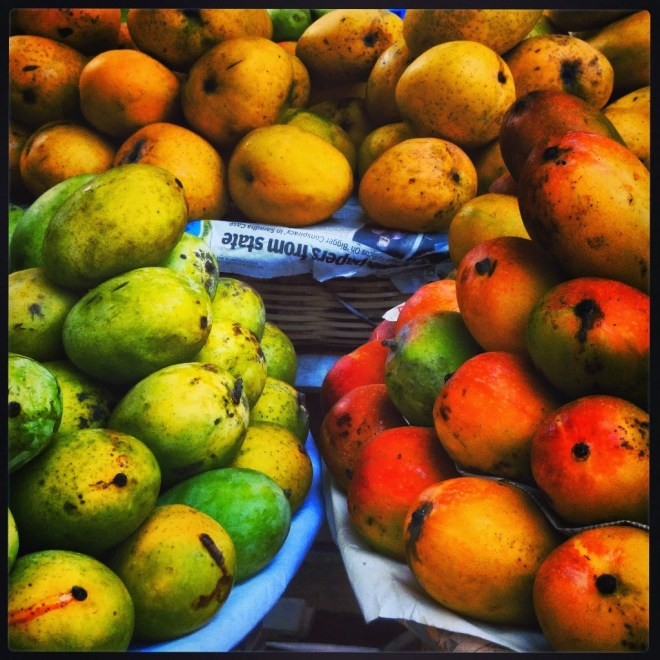 The bounty of mango season