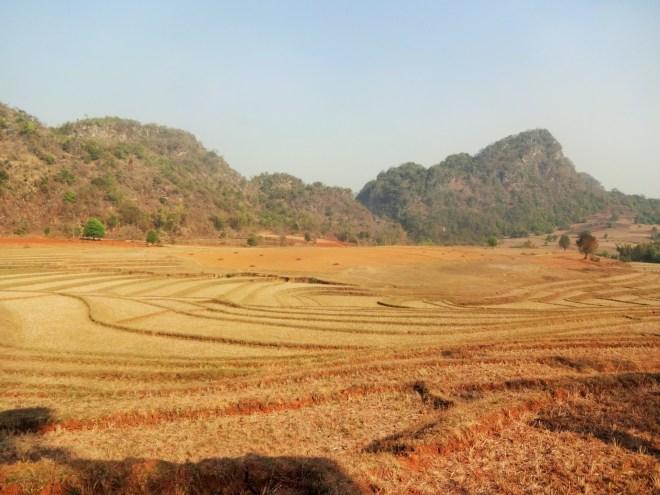 Dry terraced fields