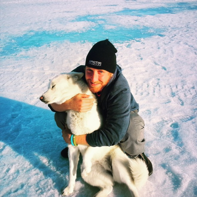 Sicoya, the camp husky and bear patrol
