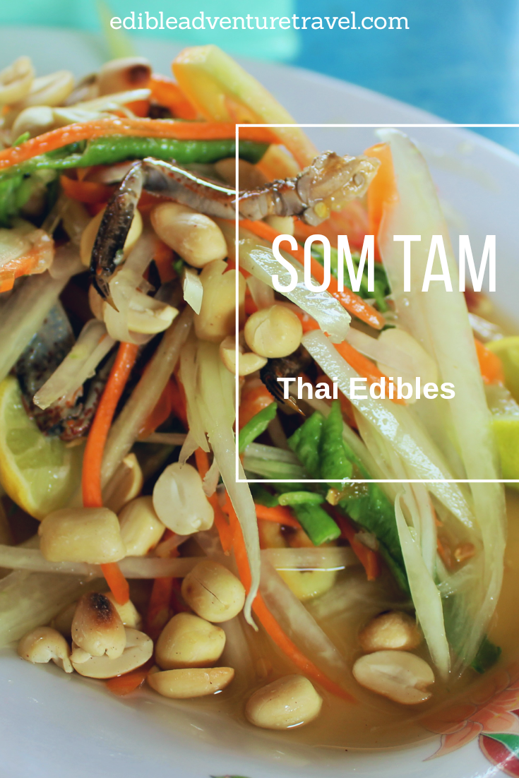 Well known, Thai Papaya Salad is a dish I'm sure ou will have again and again, but be sure to try some variations on it.