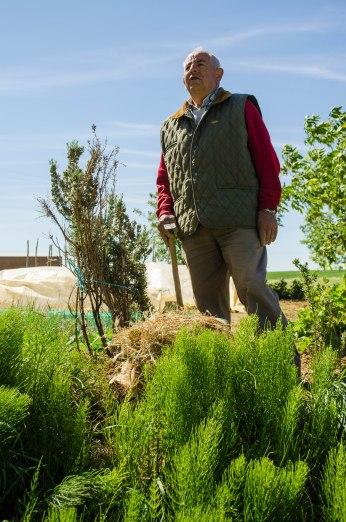 The Spanish farmer tending to his home garden.