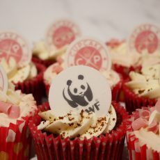 WWF Charity Cupcake Decoration