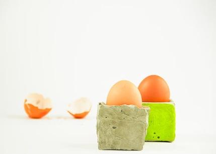 egg holder craft