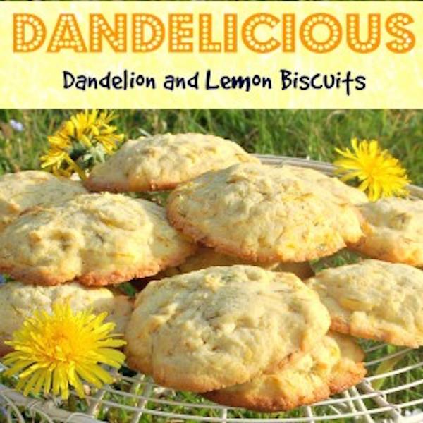 Dandelicious