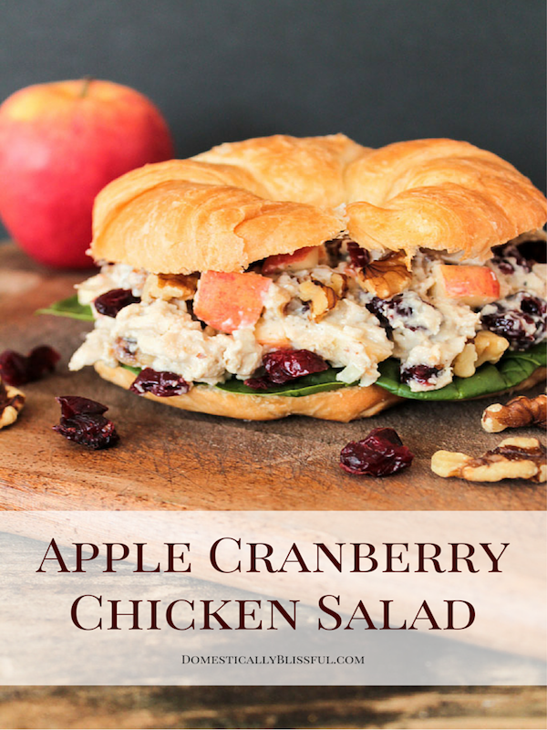 Apple-Cranberry-Chicken-Salad