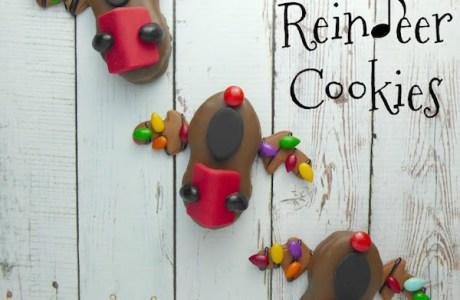 Singing Reindeer Cookies