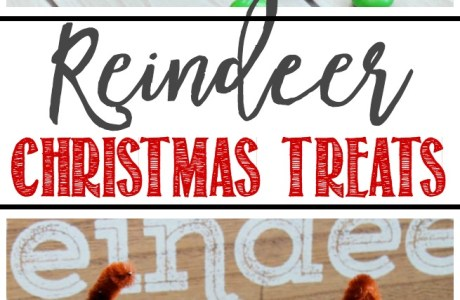 Christmas Recipe – Reindeer Treats