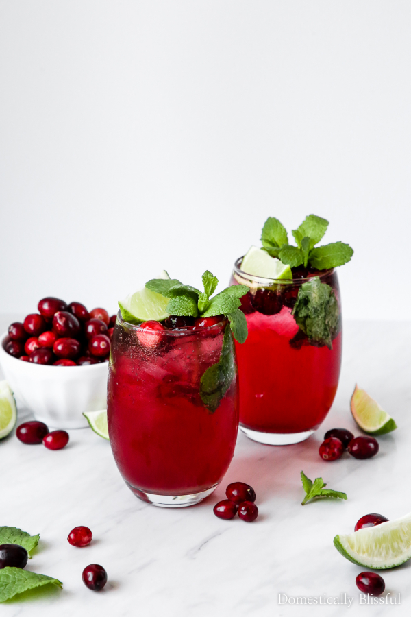 Make Your Own Virgin Cranberry Mojitos